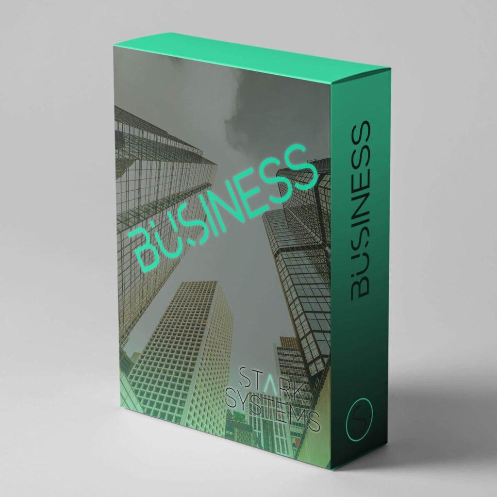 Webseiten Paket Business